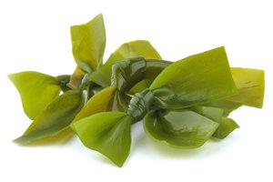 Применение бурых водорослей в косметологии