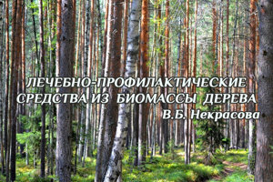 Лечебно-профилактические  средства из  биомассы  дерева